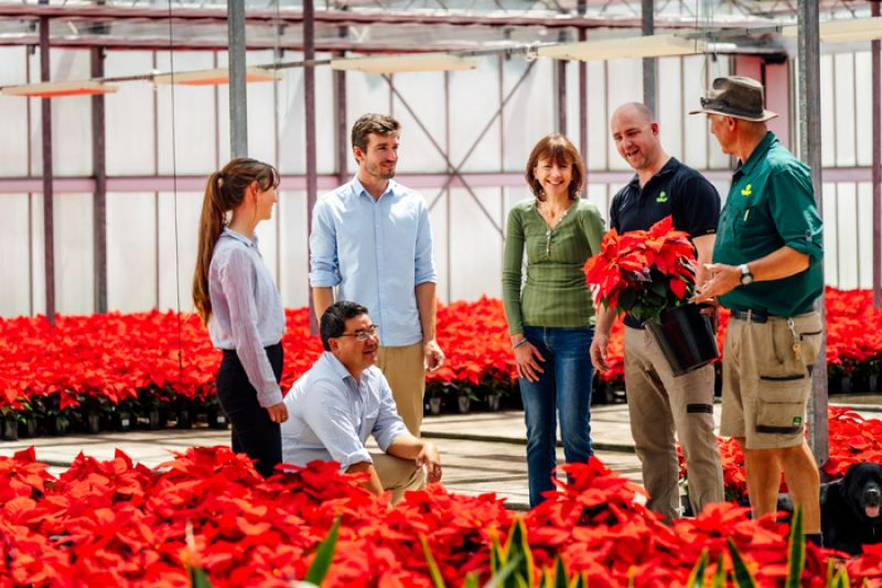 National horticulture course offers online study options