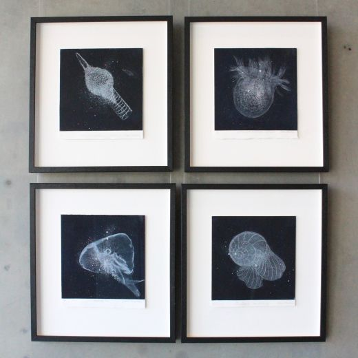 Etchings by Diane Masters